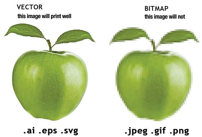 phan-biet-dinh-dang-hinh-anh-vector-vs-raster-bitmap